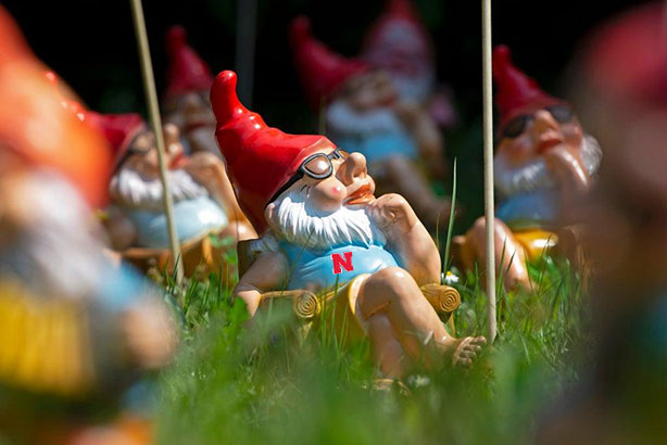 Nebraska Huskers Garden Gnomes